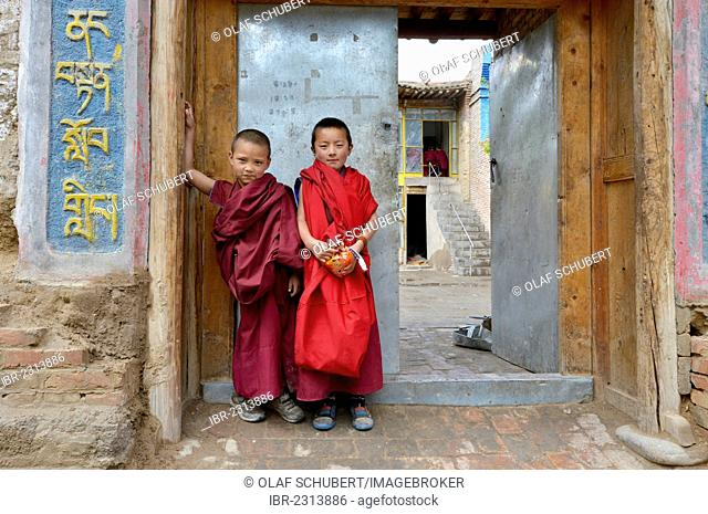 Two young novice monks, students, in front of a Buddhist monastery school, monastery building in the traditional architectural style, Tongren Monastery, Repkong