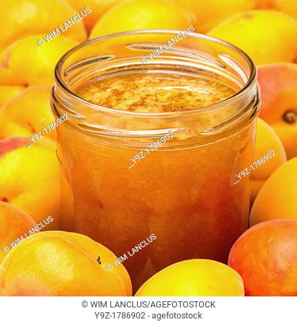 Apricot jam in jar with apricots