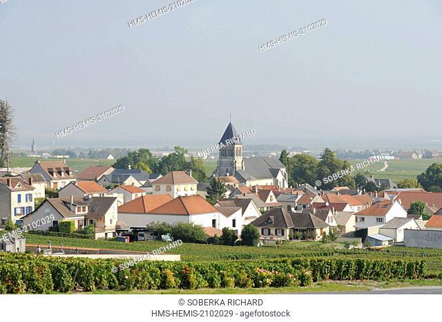 France, Marne, Oger, village south view