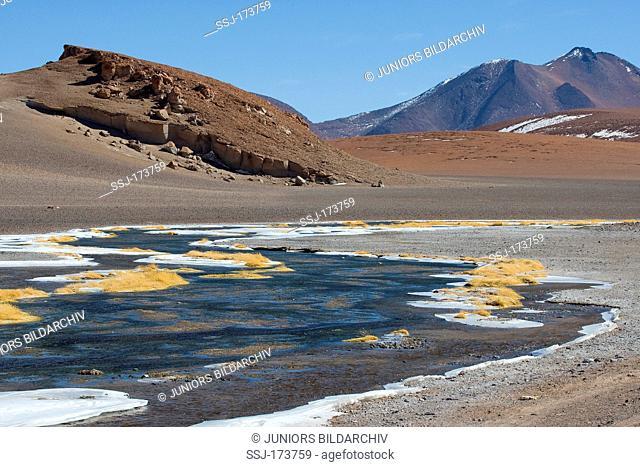 Frozen lagoon at mountain pass Paso de Jama near San Pedro de Atacama, Chile