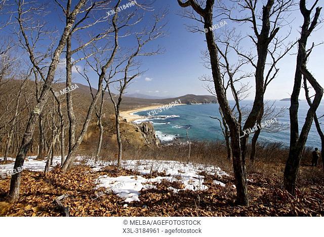 Petrova cordon. Lazovsky Nature Reserve, Sikhote-Alin mountain range. Primorsky Krai. Japon sea. Russia, Asia