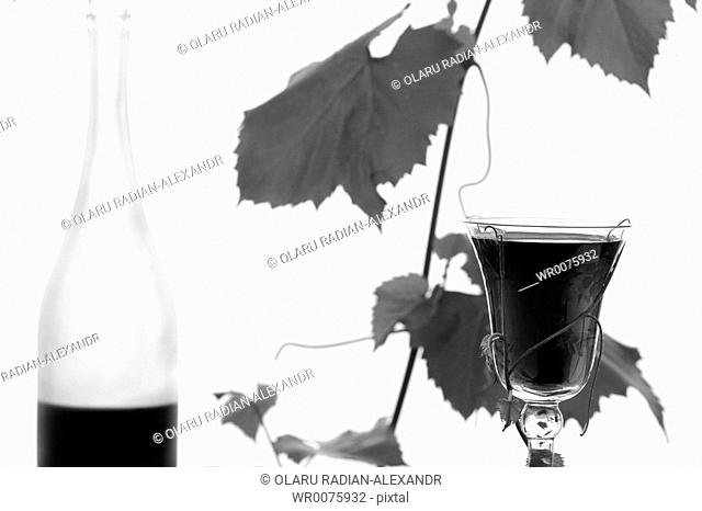red wine glass and bottl, isolated on white
