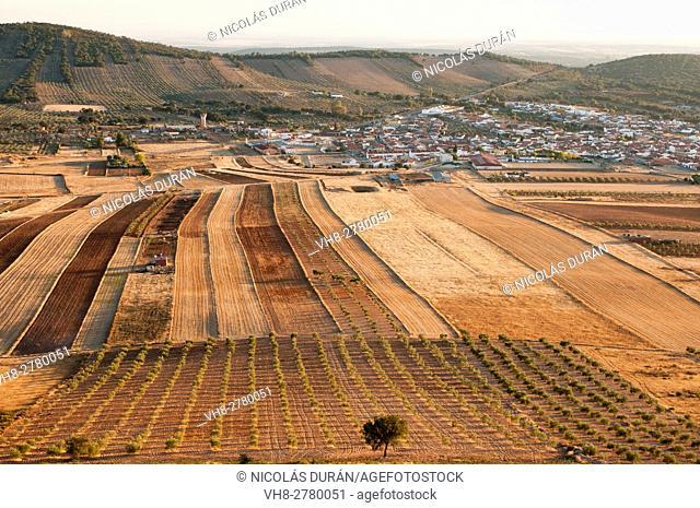 Crop field in Puebla de Obando village, Badajoz province, Extremadura, Spain
