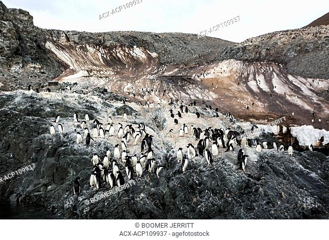 Melting snow runs down the Madder Cliffs on Joinville Island which play host to a large Adelie Penguin colony, Joinville Island, Antarctic Peninsula