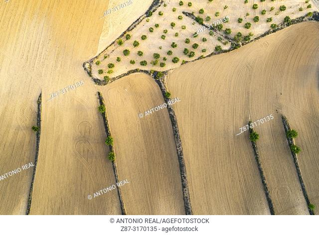 Drone view of farmlands. Almansa, Albacete province, Spain