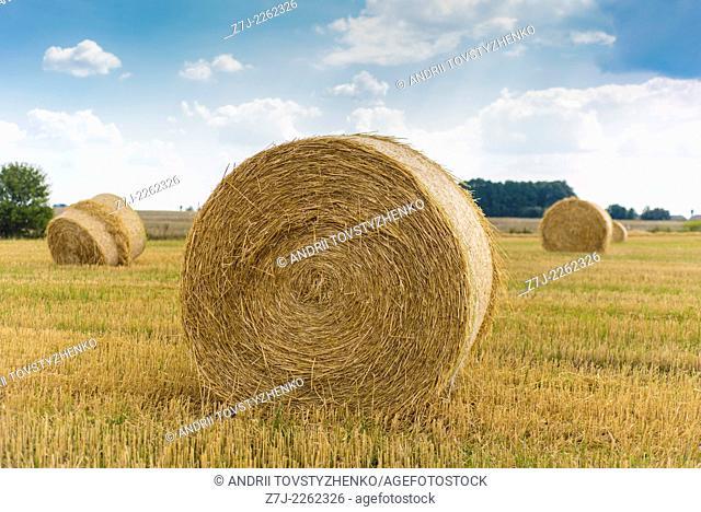 boulders straw stubble field, Ukraine