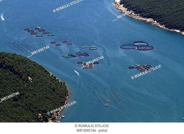 Fishing nets and boats, aerial view, Mediterranean Sea, Istria, Croatia