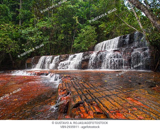Quebrada de Jaspe, Bolívar, Gran Sabana, Venezuela, South America River, red Jaspis, water surface, Leaf, drives South America