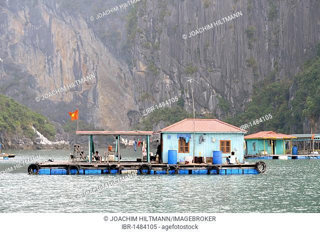 Floating fishing village, Halong Bay, Vinh Ha Long, North Vietnam, Vietnam, Southeast Asia, Asia