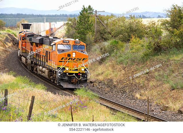 A Burlington Northern Santa Fe in Airway Heights, Washington, USA