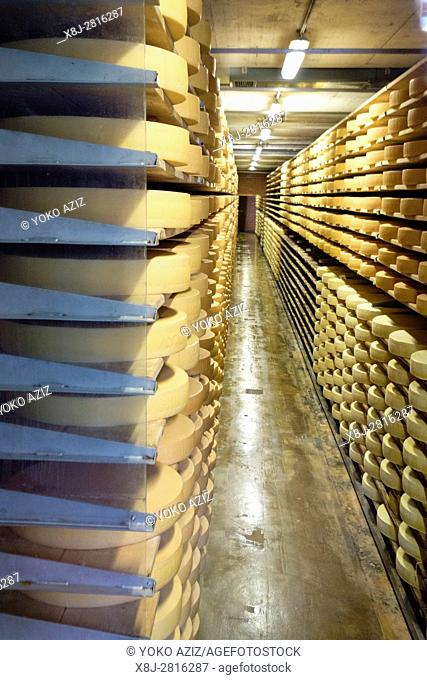 Switzerland, canton Fribourg, Gruyeres, Gruyeres, traditional cheese