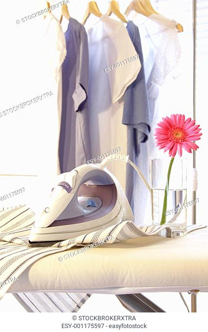 Iron with flower on ironing board in sunny room