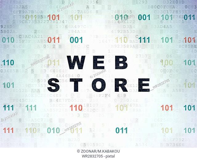 Web design concept: Web Store on Digital Data Paper background