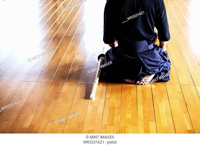 Rear view of Japanese Kendo fighters kneeling on wooden floor