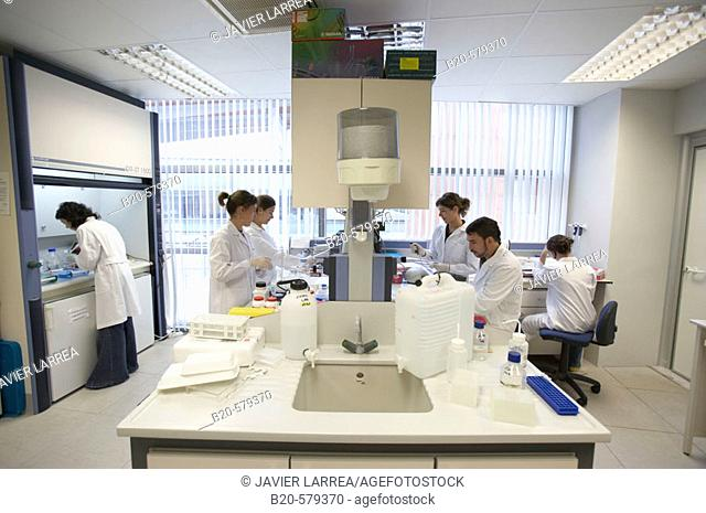 Researchers working in laboratory. Fundación Inbiomed, Genetrix Group. Center for research in stem cells and regenerative medicine