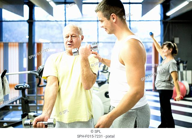 MODEL RELEASED. Senior man picking up dumbbells with trainer in gym