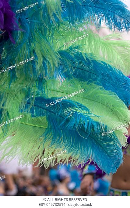 Close up of colorful feathers of a Carnival suit