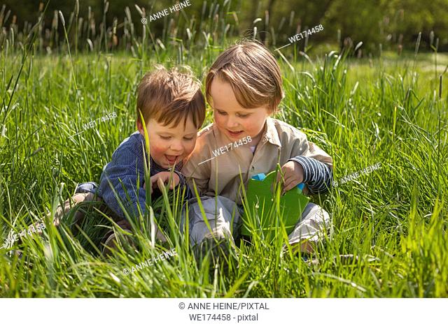 Brothers sitting in grass laughing. Hennef-Lichtenberg, Germany