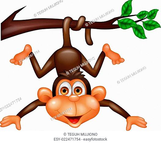 Funny monkey hanging on tree branch