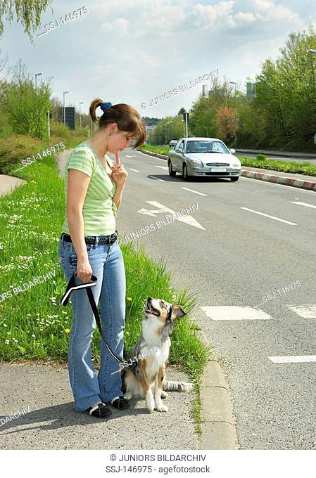 australian sheperd puppy and woman - standing at street / restrictions: Tierratgeber-Bücher / animal guidebooks