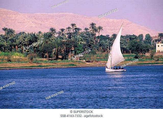 EGYPT, NILE RIVER AT LUXOR, FELUCCA