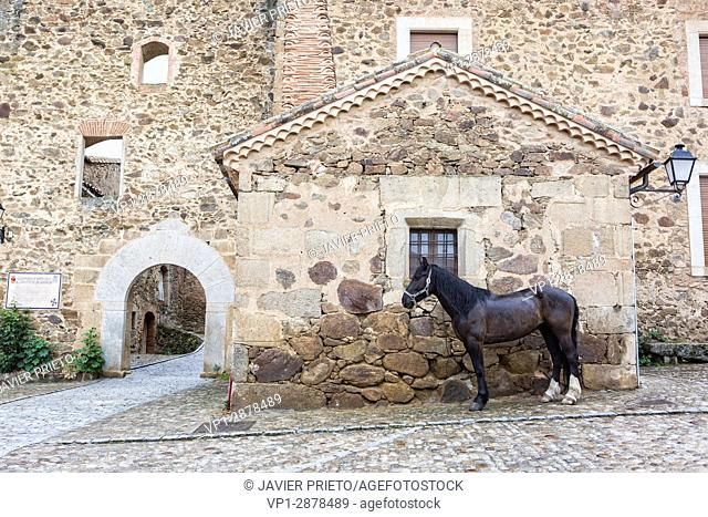 Access to the cloister of the Dominican convent of Aldeanueva de Santa Cruz in which the Town Hall of the town is located. Valley of the Corneja