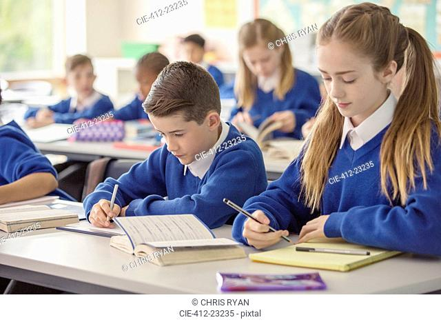 Elementary school children working at desk in classroom during lesson
