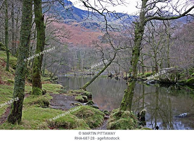River Derwent, Lake District, Cumbria, England, United Kingdom, Europe