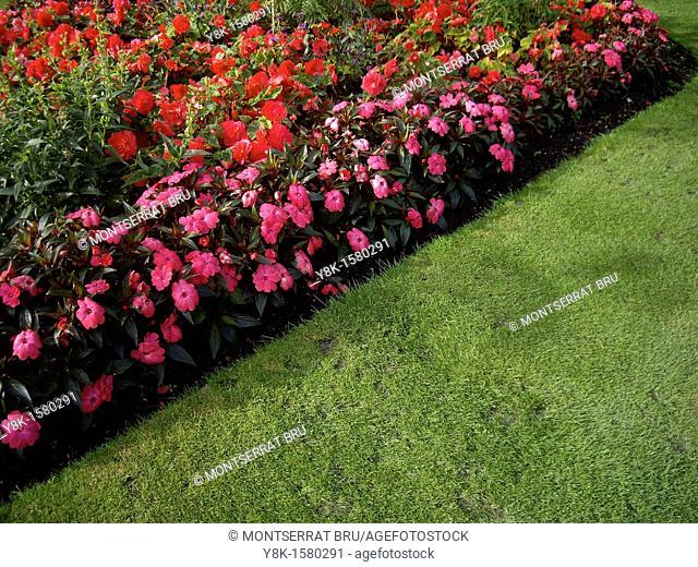 Diagonal shaped flowerbed