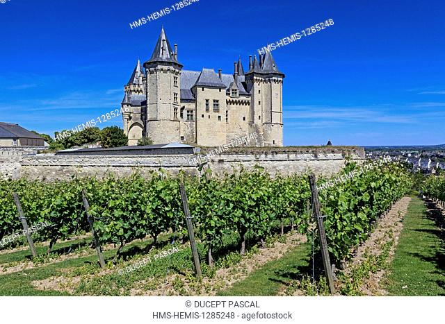 France, Maine et Loire, Loire Valley listed as World Heritage by UNESCO, the castle of Saumur and its vineyard