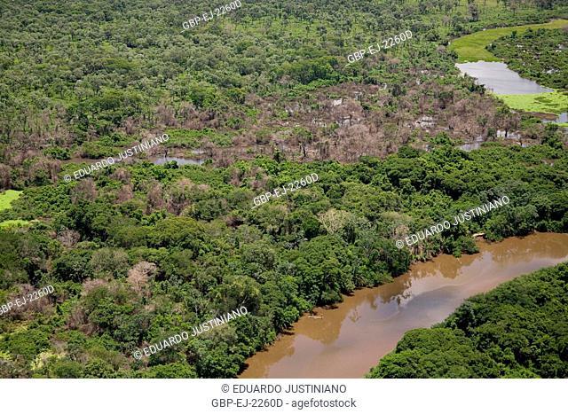 Miranda River and Flooded Plain, Miranda, Mato Grosso do Sul, Brazil