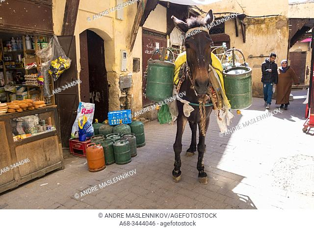 A man delivers gas bottle with the help of a horse. Medina in Old Town of Fez, Morocco. Photo: André Maslennikov