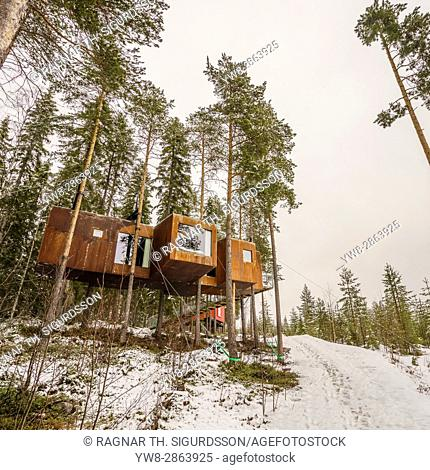 Accommodation in the woods, known as The Dragon Fly at the Tree Hotel in Lapland, Sweden