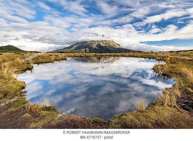 Cloud-covered stratovolcano Mount Taranaki or Mount Egmont reflected in Pouakai Tarn, Mount Egmont National Park, Taranaki, North Island, New Zealand