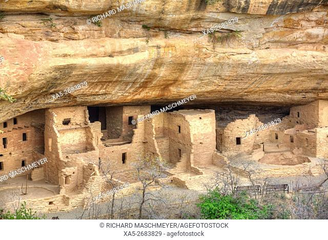 Anasazi Ruins, Spruce Tree House, Mesa Verde National Park, UNESCO World Heritage Site, 600 A.D. - 1, 300 A.D., Colorado, USA