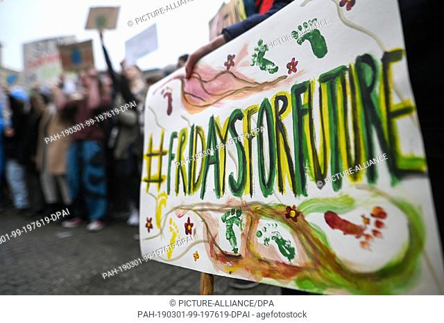 """01 March 2019, Baden-Wuerttemberg, Stuttgart: """"""""#Fridaysforfuture"""""""" is written on a sign during a demonstration for climate protection"""