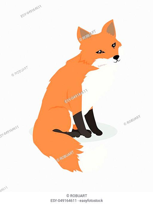 Fox cartoon character. Cute fox flat vector isolated on white background. North America and Eurasia fauna. Fox icon. Animal illustration for zoo ad