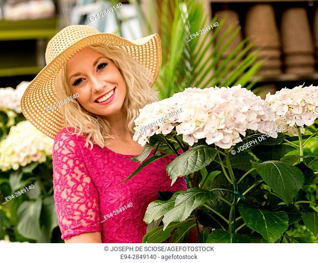 A 30 year old blond woman shopping in a plant nursery holding a large hydrangea plant