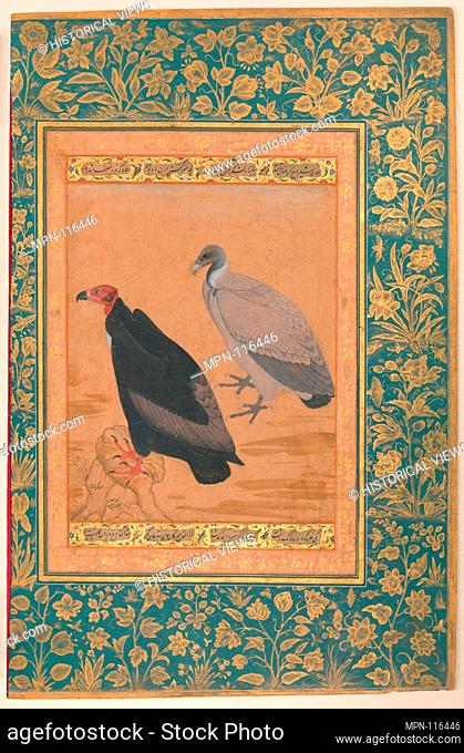 Red-Headed Vulture and Long-Billed Vulture, Folio from the Shah Jahan Album. Artist: Painting by Mansur (active ca. 1589-1626); Calligrapher: Mir 'Ali Haravi (d