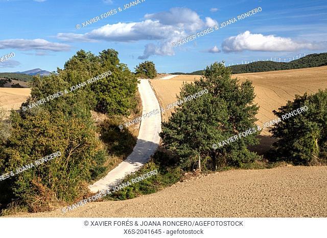 Crops near Monreal, Navarra, Spain