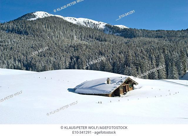 The Alpine hut Traunsteiner Huette on the Winkelmoosalm and mount Duerrnbachhorn (1776 m.) in background. Upper Bavaria, Germany