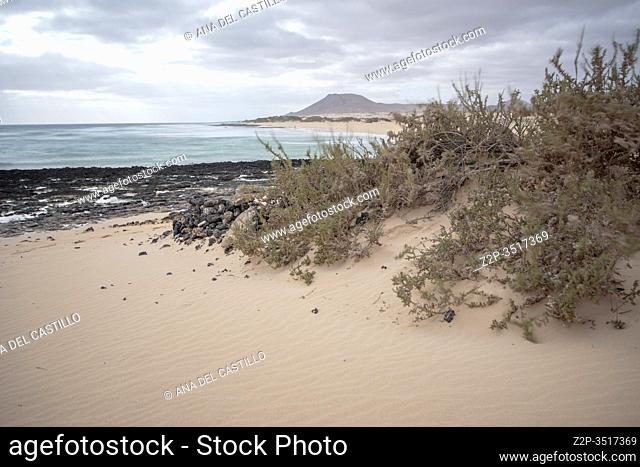 Sand dunes in Corralejo Fuerteventura Canary islands Spain