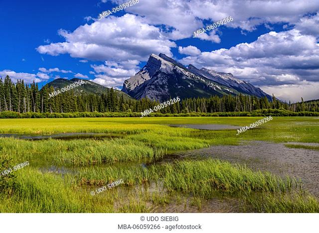 Canada, Alberta, Banff National Park, Banff, Vermilion Lakes against Tunnel Mountain and Mount Rundle