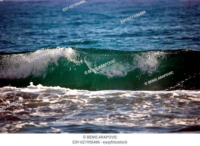 ocean harmony