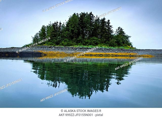 Grove of green trees on small island reflecting in the waters of Sebree Cove, Glacier Bay National Park & Preserve, Southeast Alaska, Summer