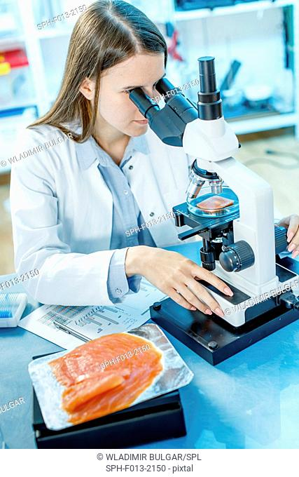 Female scientist studying salmon under a microscope