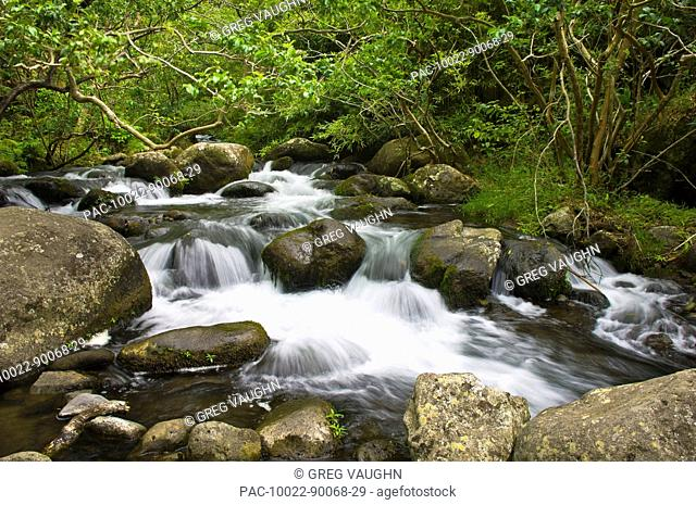 Hawaii, Maui, Waihe'e Valley, View of flowing stream