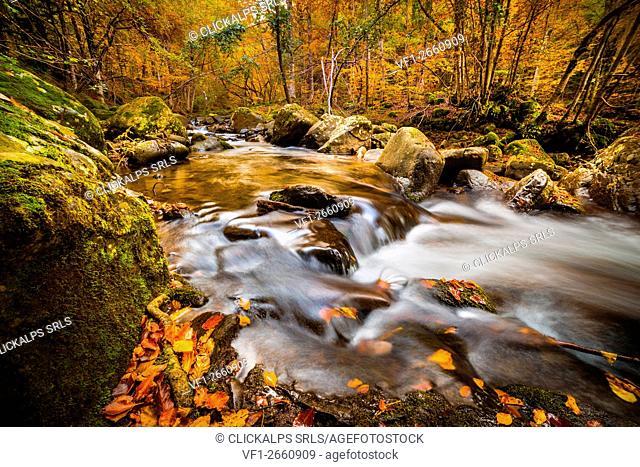 The Dardagna Falls, Corno alle Scale Natural Park, Bologna, Emilia Romagna, Italy