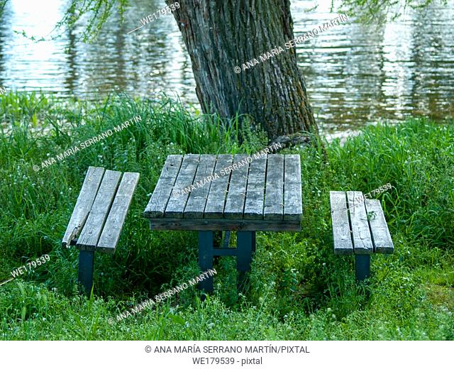 Wooden tables and benches in a picnic area in a river shore between the grass
