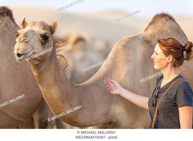 UAE, woman with a camel